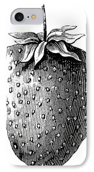Botany: Strawberry Phone Case by Granger