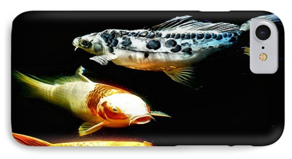 Bright Colored Fish IPhone Case by Don Mann