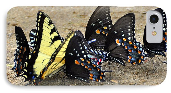 Butterflies By The Buches Phone Case by Marty Koch