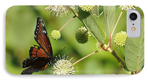 Butterfly Phone Case by Keith Lovejoy
