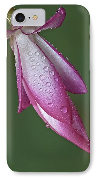 Cactus Flower Drops IPhone Case by Susan Candelario
