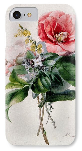 Camellia And Broom IPhone Case by Marie-Anne