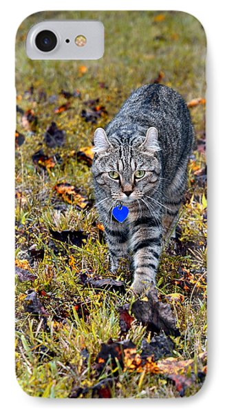 Cat In Autumn Phone Case by Susan Leggett