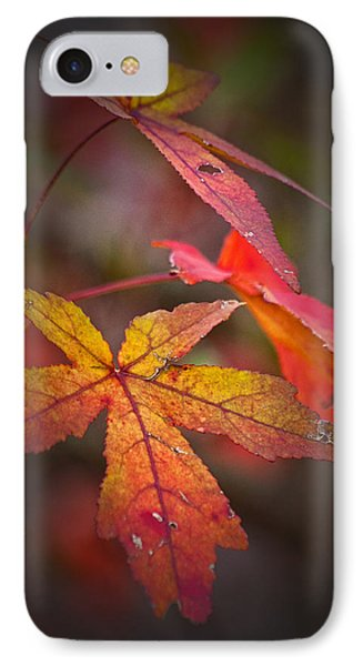 Colors Phone Case by Karol Livote