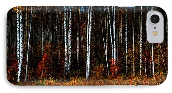 Colors Of Fall Phone Case by Jenny Rainbow