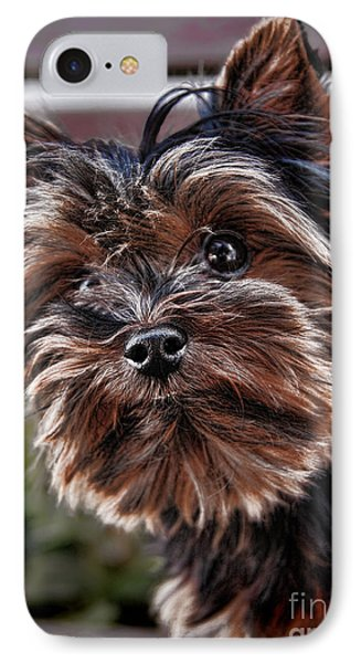 Curious Yorkshire Terrier Phone Case by Mariola Bitner