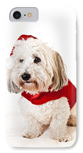 Cute Dog In Santa Outfit IPhone Case by Elena Elisseeva