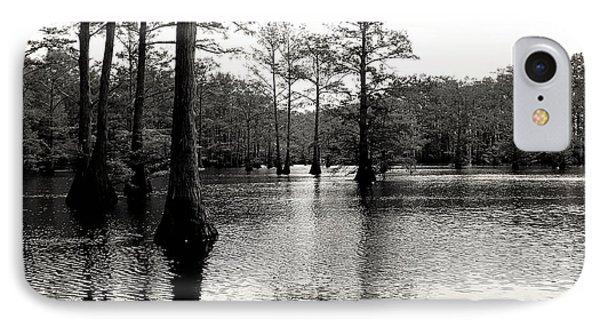 Cypress Trees In Louisiana Phone Case by Ester  Rogers
