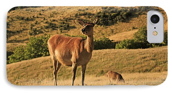 Deer On Mountain 2 Phone Case by Pixel Chimp