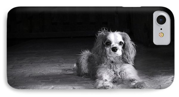 Dog Black And White Phone Case by Jane Rix