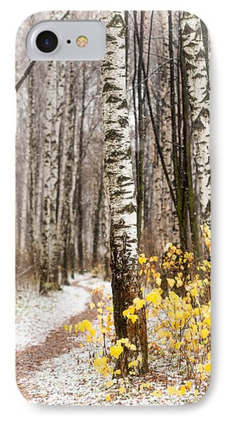 First Snow. Hidden Path Phone Case by Jenny Rainbow