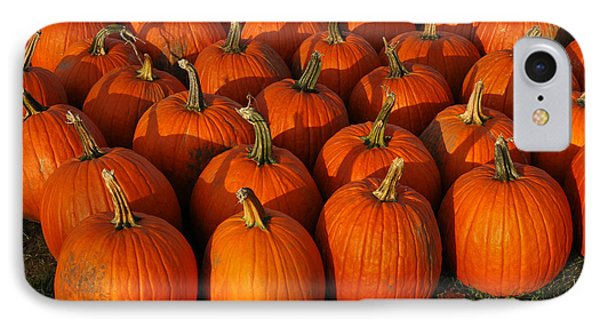 Fresh From The Farm Orange Pumpkins Phone Case by LeeAnn McLaneGoetz McLaneGoetzStudioLLCcom