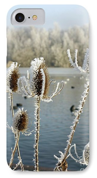 Frosty Teasel Phone Case by John Chatterley
