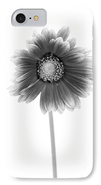 Gerbera In Black And White IPhone Case by Sebastian Musial