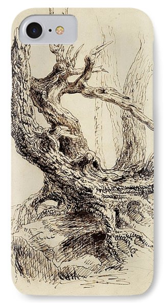 Gnarled Tree Trunk IPhone Case by Thomas Cole