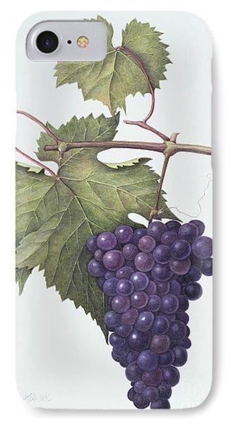 Grapes  IPhone 7 Case by Margaret Ann Eden