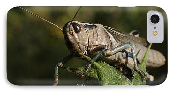 Grasshopper 2 IPhone 7 Case by Ernie Echols