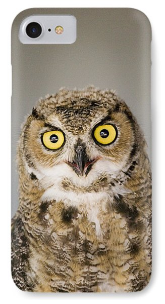 Great Horned Owl Phone Case by Henry Georgi Photography Inc