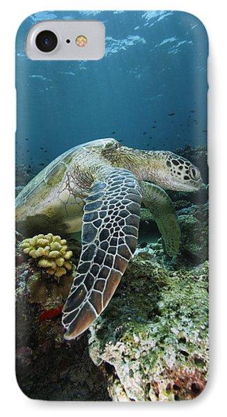Green Sea Turtle Chelonia Mydas Phone Case by Hiroya Minakuchi
