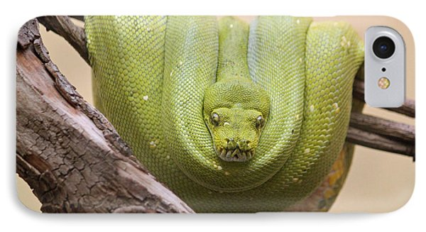 Green Tree Python IPhone 7 Case by Suzanne Gaff