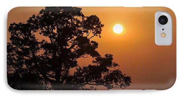 Hazy Sunset Phone Case by Marty Koch