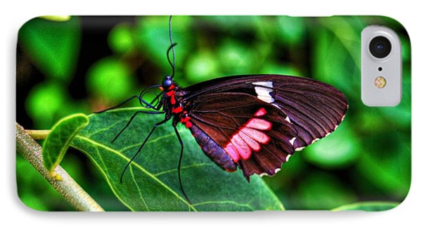 Hello Flutterby Phone Case by Randy Aveille
