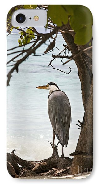 Heron IPhone Case by Jane Rix