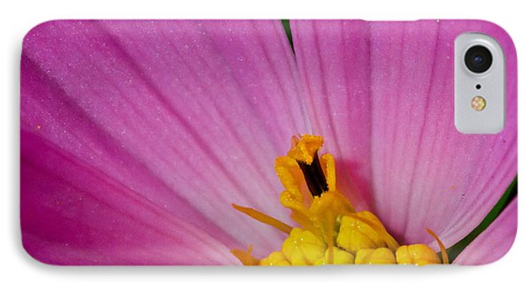 Honey Bee's Candy Dish Phone Case by Mitch Shindelbower