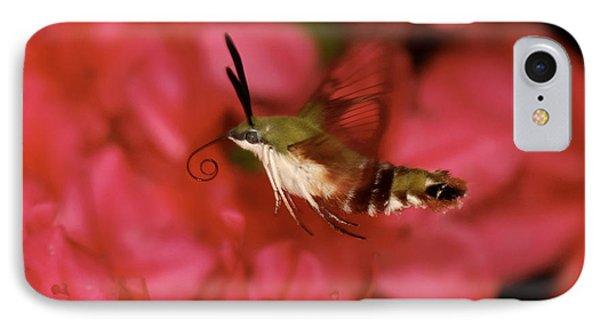 Hovering Clearwing Hummingbird Moth Phone Case by Lara Ellis