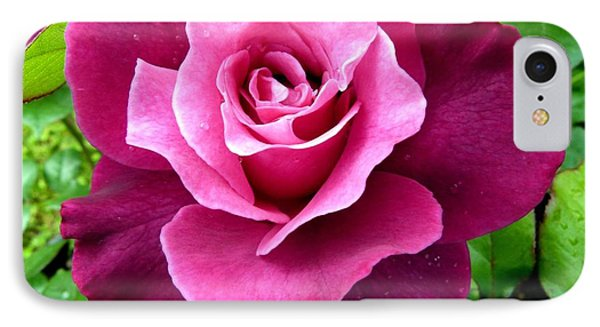 Intrigue Rose Phone Case by Will Borden