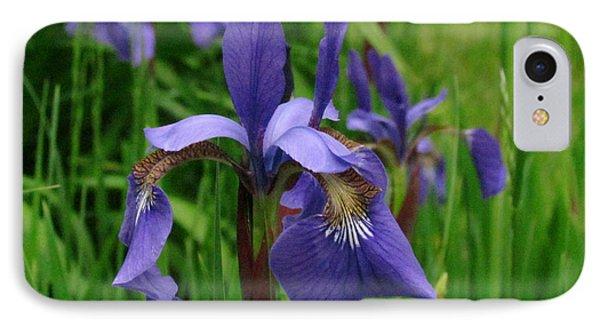 Irises Phone Case by Randi Shenkman