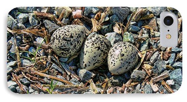 Killdeer Bird Eggs IPhone 7 Case by Jennie Marie Schell