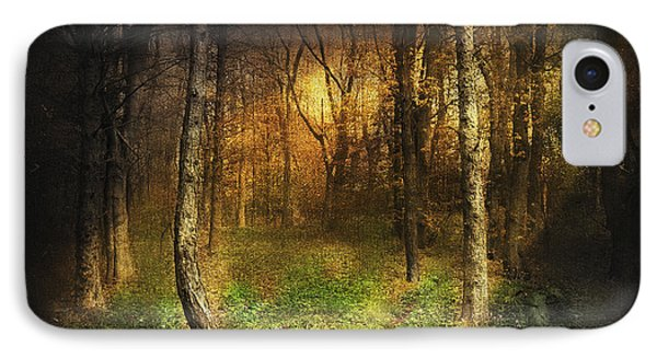 Last Rays IPhone Case by Svetlana Sewell