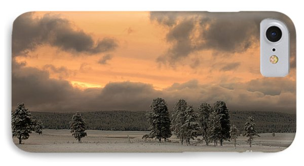 Late Spring Storm In Yellowstone Phone Case by Sandra Bronstein