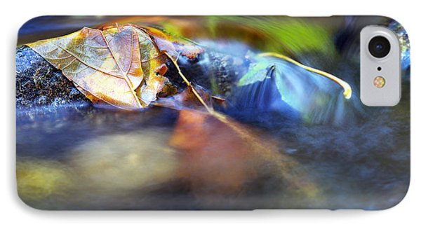Leaves On Rock In Stream IPhone Case by Sharon Talson