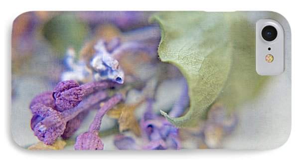 Lilacs In Macro IPhone Case by Bonnie Bruno