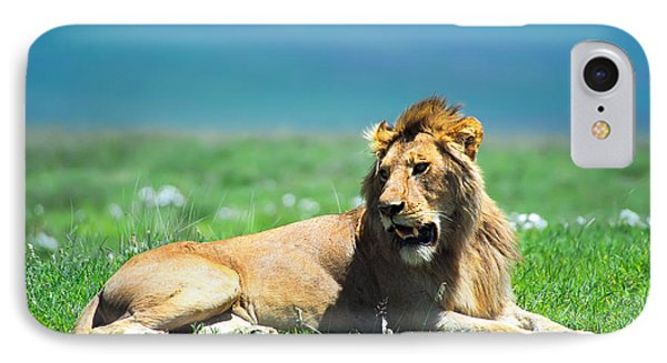 Lion King IPhone Case by Sebastian Musial