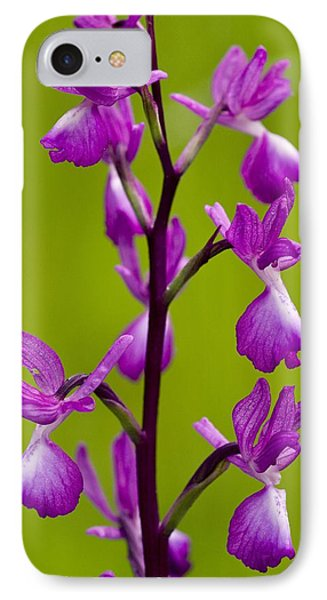 Loose-flowered Orchid (orchis Laxiflora) IPhone Case by Bob Gibbons