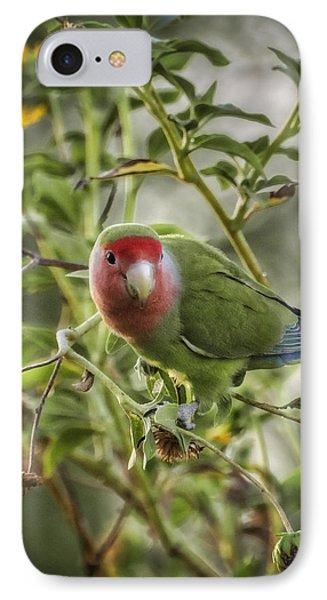 Lovely Little Lovebird IPhone 7 Case by Saija  Lehtonen