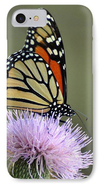 Magnificient Monarch Phone Case by Marty Koch