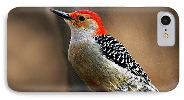 Male Red-bellied Woodpecker 4 Phone Case by Larry Ricker