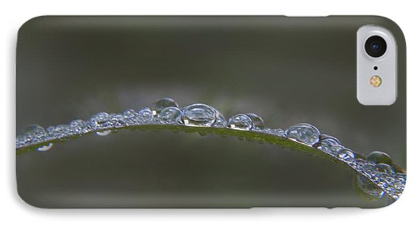 Morning Raindrops On Wild Grass Phone Case by Darleen Stry