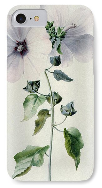 Musk Mallow Phone Case by Marie-Anne