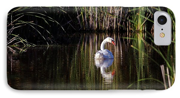 Mute Swan Phone Case by Jim Nelson