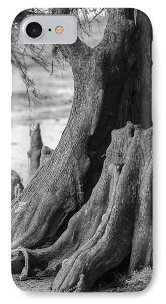 Natural Cypress Phone Case by Carolyn Marshall