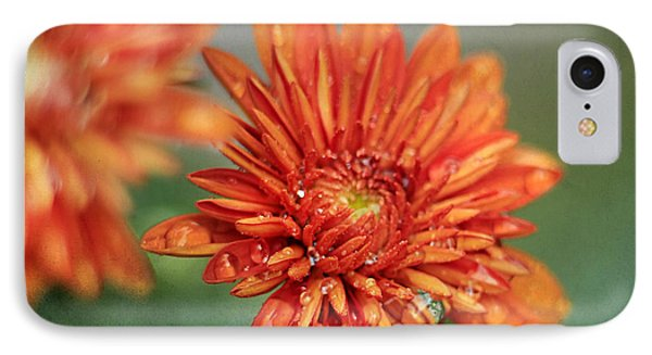 October Mums Phone Case by Darren Fisher