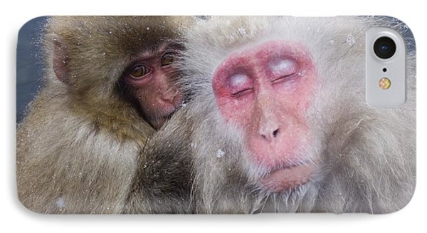 Older Snow Monkey Being Groomed By A Phone Case by Natural Selection Anita Weiner
