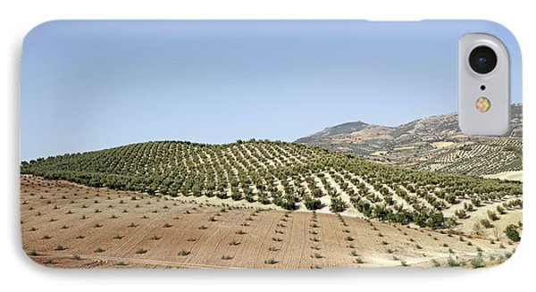 Olive Groves IPhone Case by Carlos Dominguez