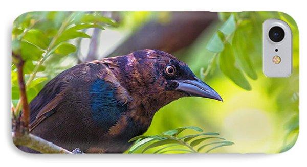 Ominous Molting Grackle Phone Case by Bill Tiepelman