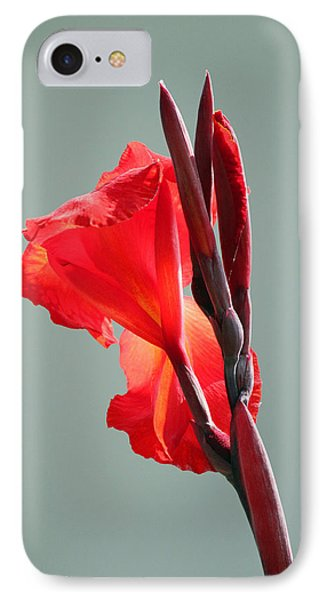 On Fire Phone Case by Suzanne Gaff